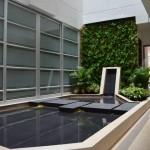 Espejo de Agua y Jardín Vertical Después
